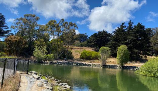 ハイキング・犬の散歩・景色を見ながらくつろげるMcLaren Park