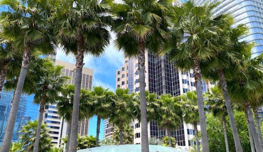 オフィス街にあるビルの屋上のガーデンパーク★Salesforcce Park